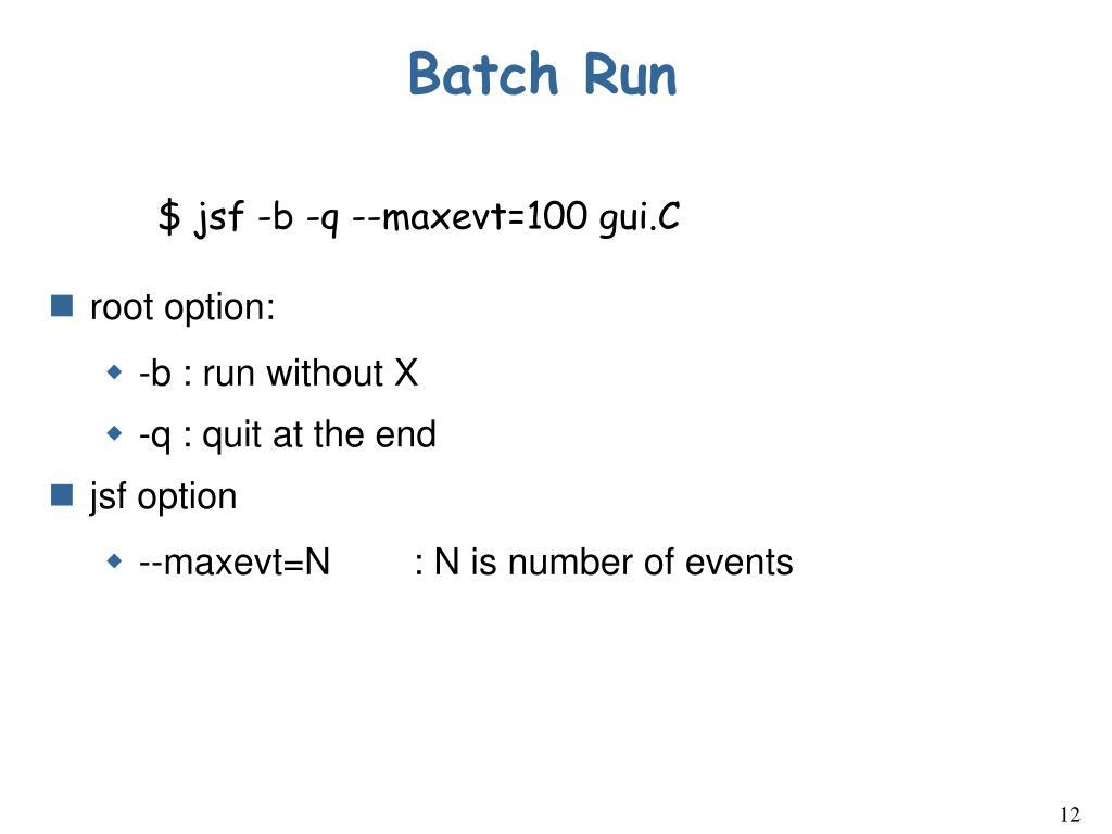 Batch Run