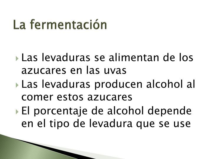 La fermentación