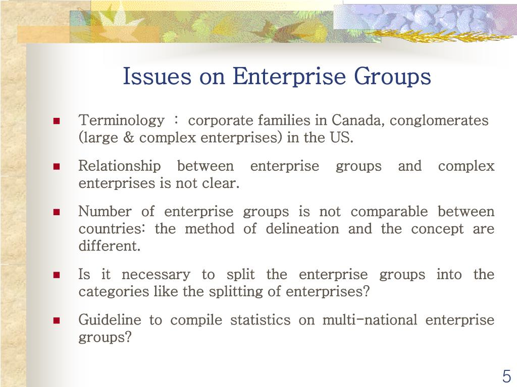 Issues on Enterprise Groups