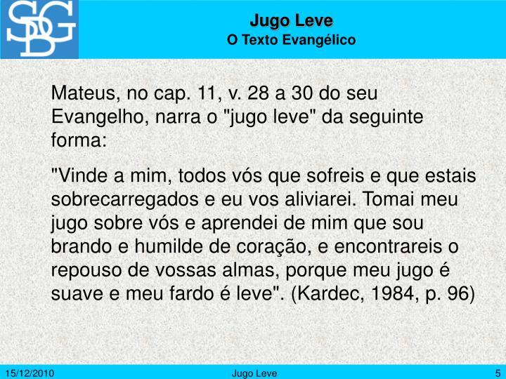 Jugo Leve