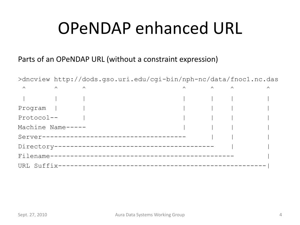 OPeNDAP enhanced URL