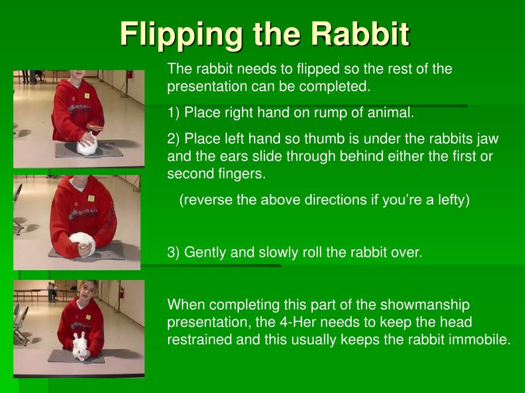 Flipping the Rabbit