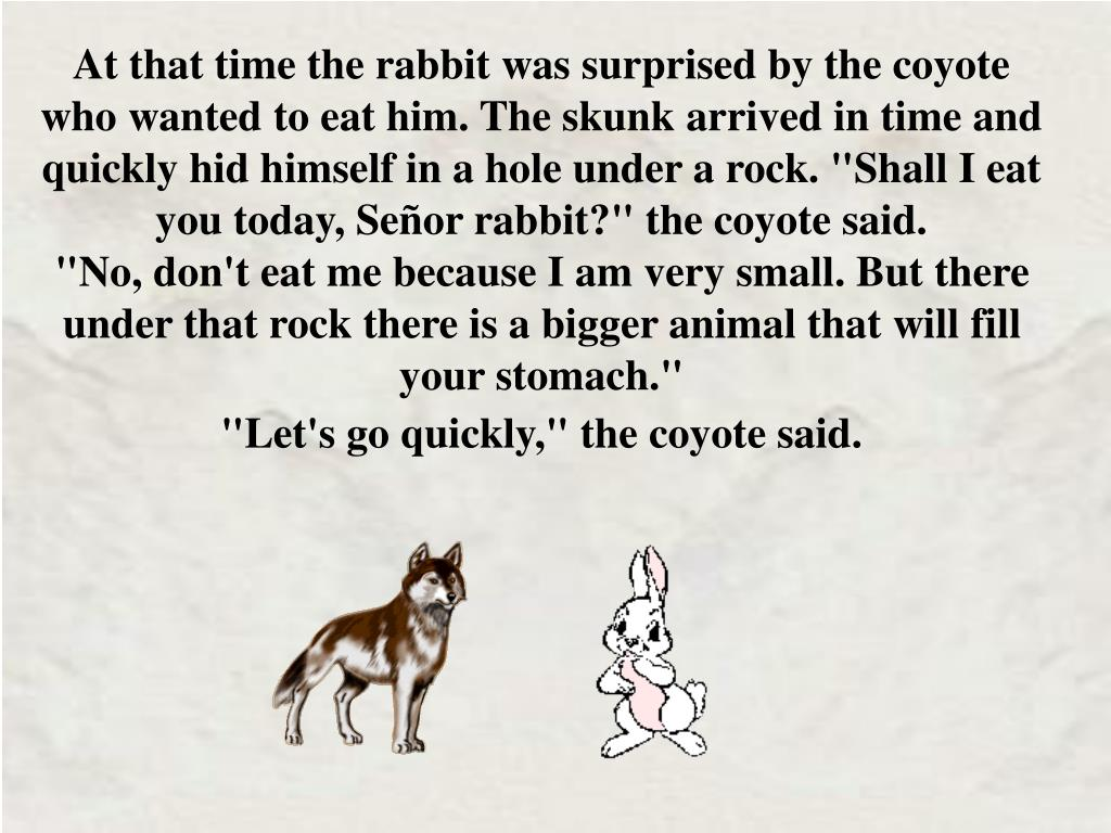 "At that time the rabbit was surprised by the coyote who wanted to eat him. The skunk arrived in time and quickly hid himself in a hole under a rock. ""Shall I eat you today, Señor rabbit?"" the coyote said."