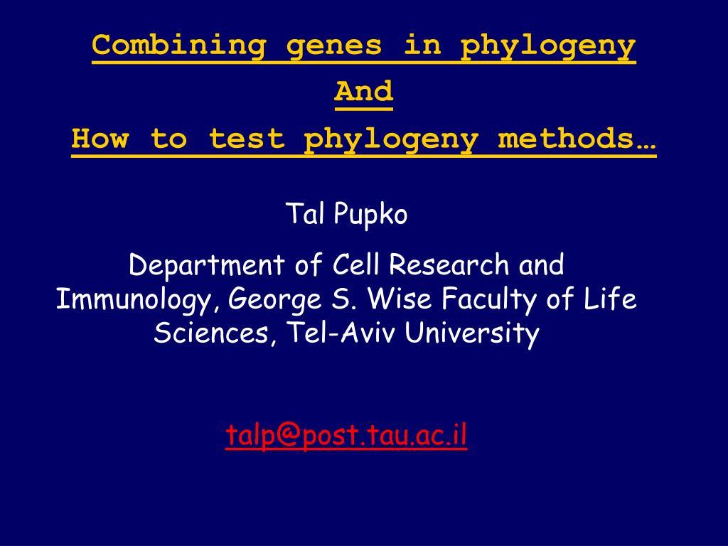 Combining genes in phylogeny