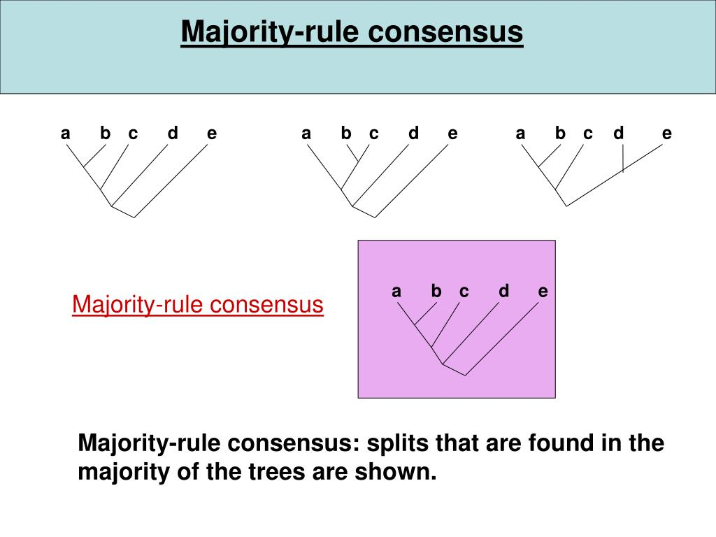 Majority-rule consensus