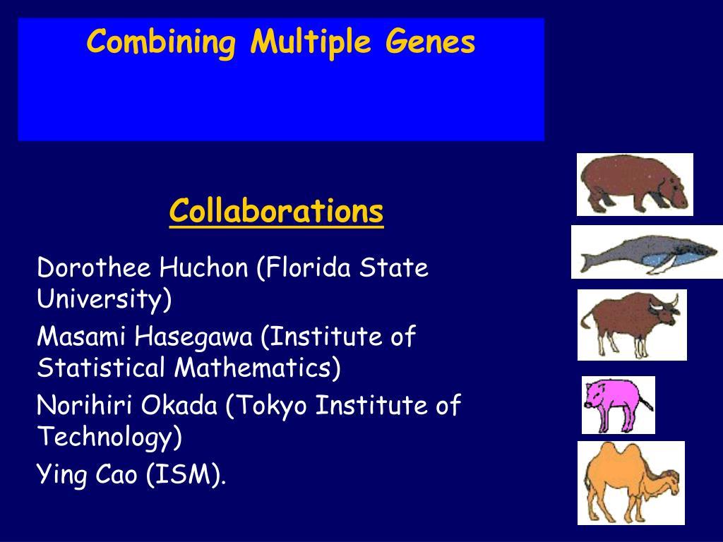 Combining Multiple Genes