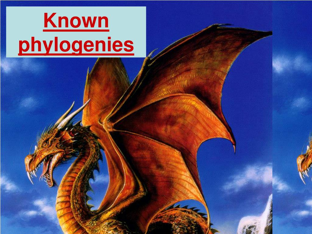 Known phylogenies