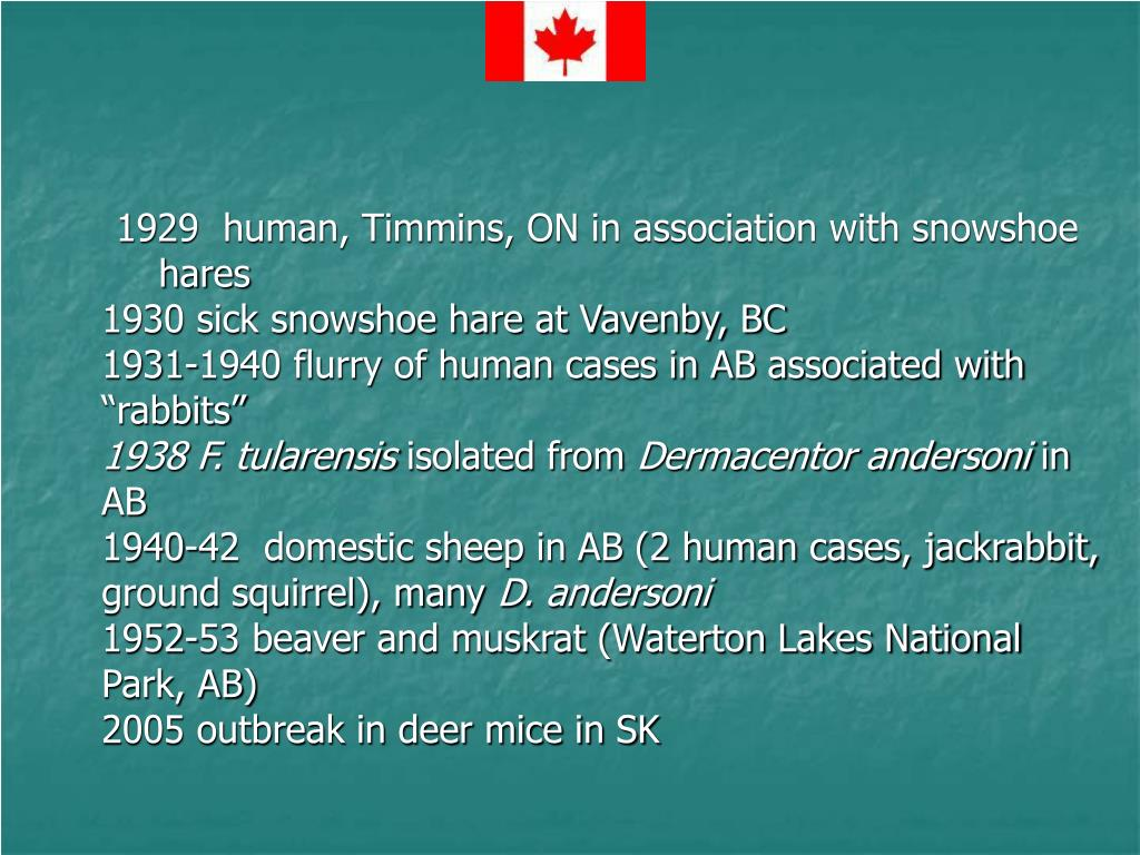1929  human, Timmins, ON in association with snowshoe hares