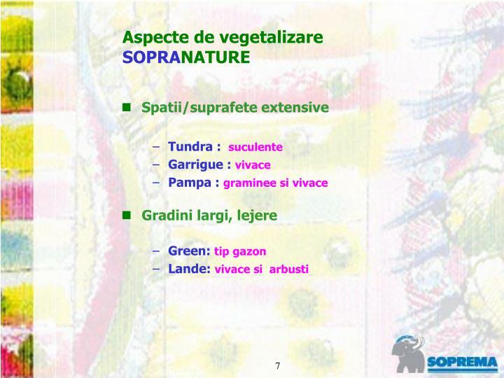 Aspecte de vegetalizare