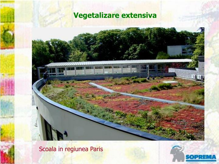 Vegetalizare extensiva