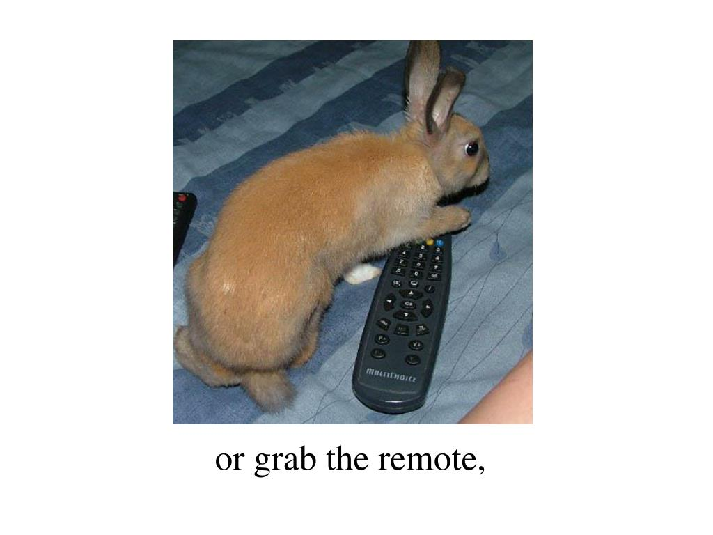 or grab the remote,