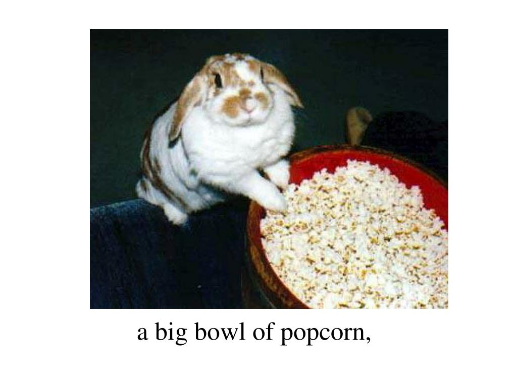a big bowl of popcorn,