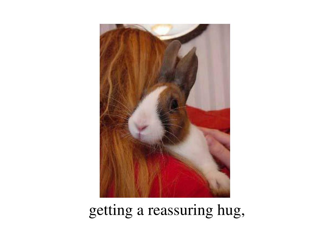 getting a reassuring hug,