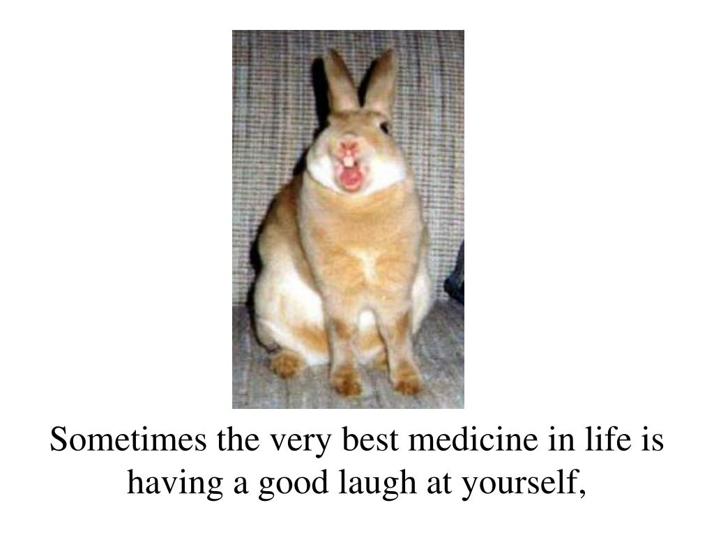 Sometimes the very best medicine in life is