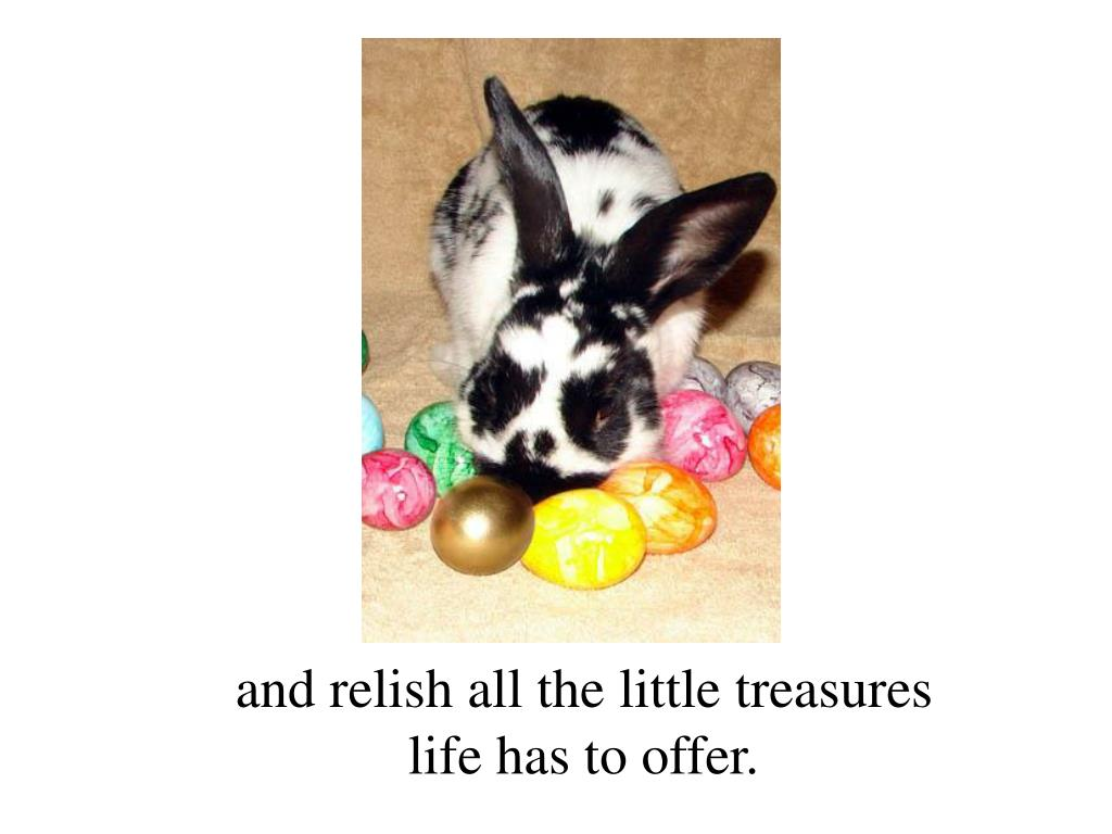 and relish all the little treasures