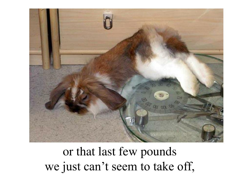 or that last few pounds