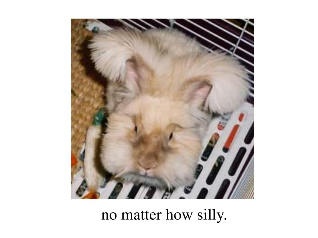 no matter how silly.