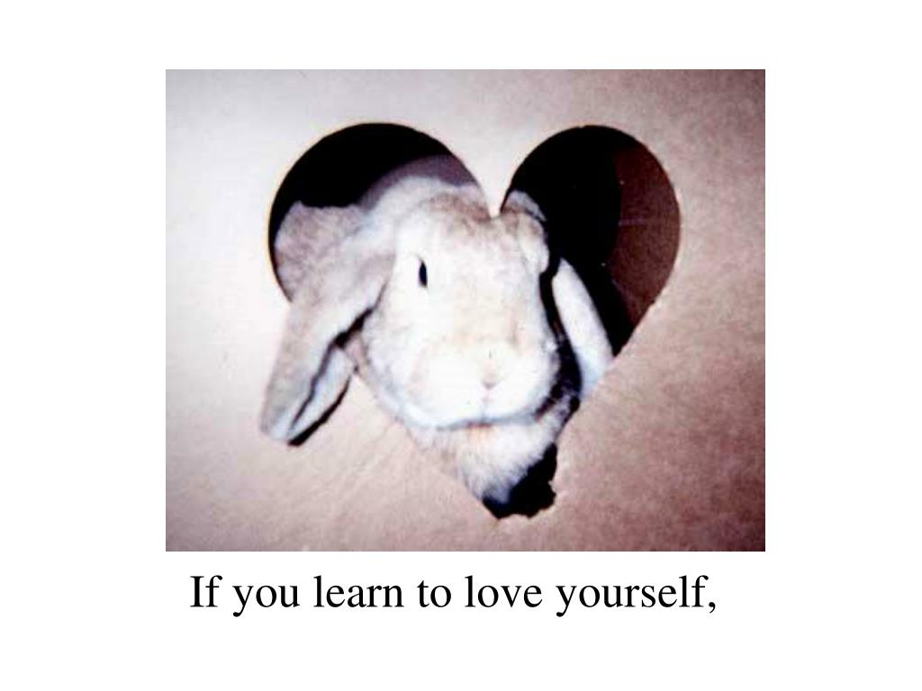 If you learn to love yourself,