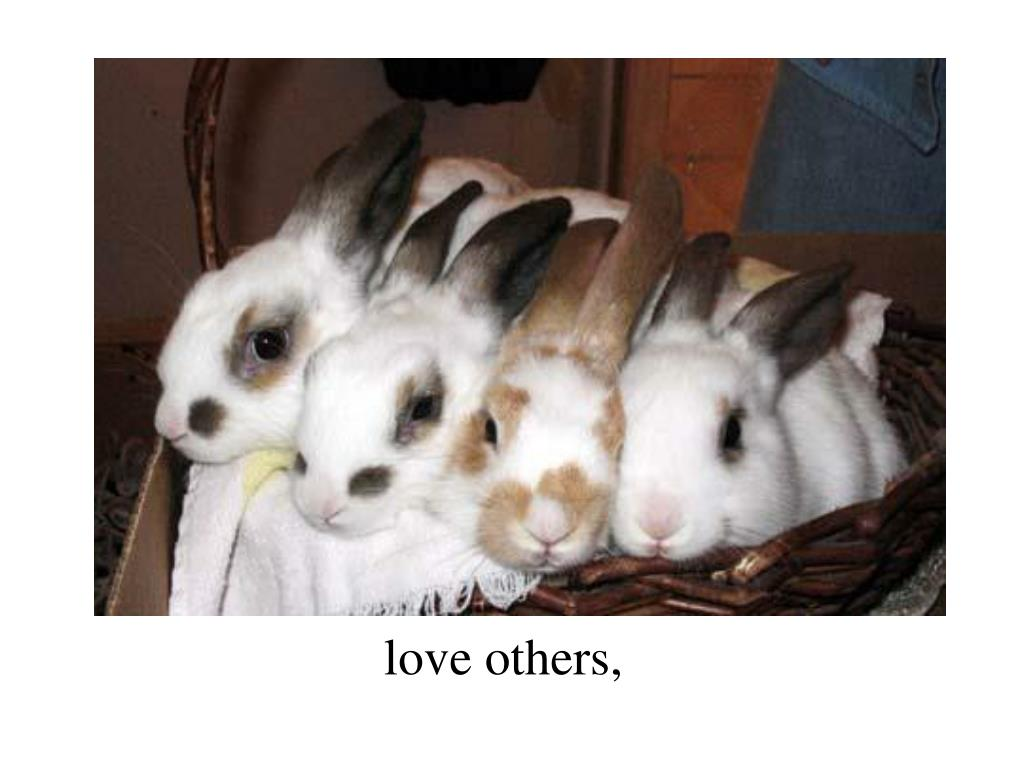 love others,