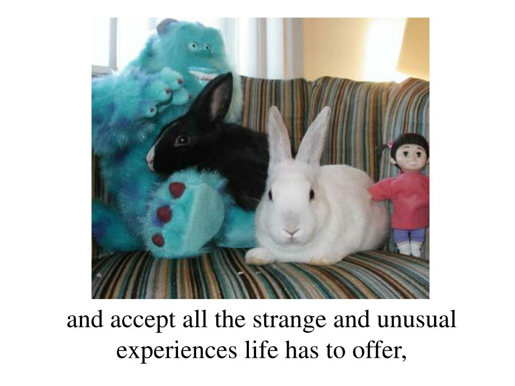 and accept all the strange and unusual