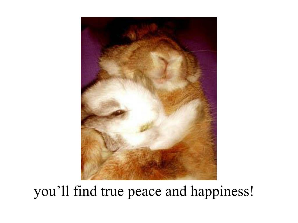 you'll find true peace and happiness!