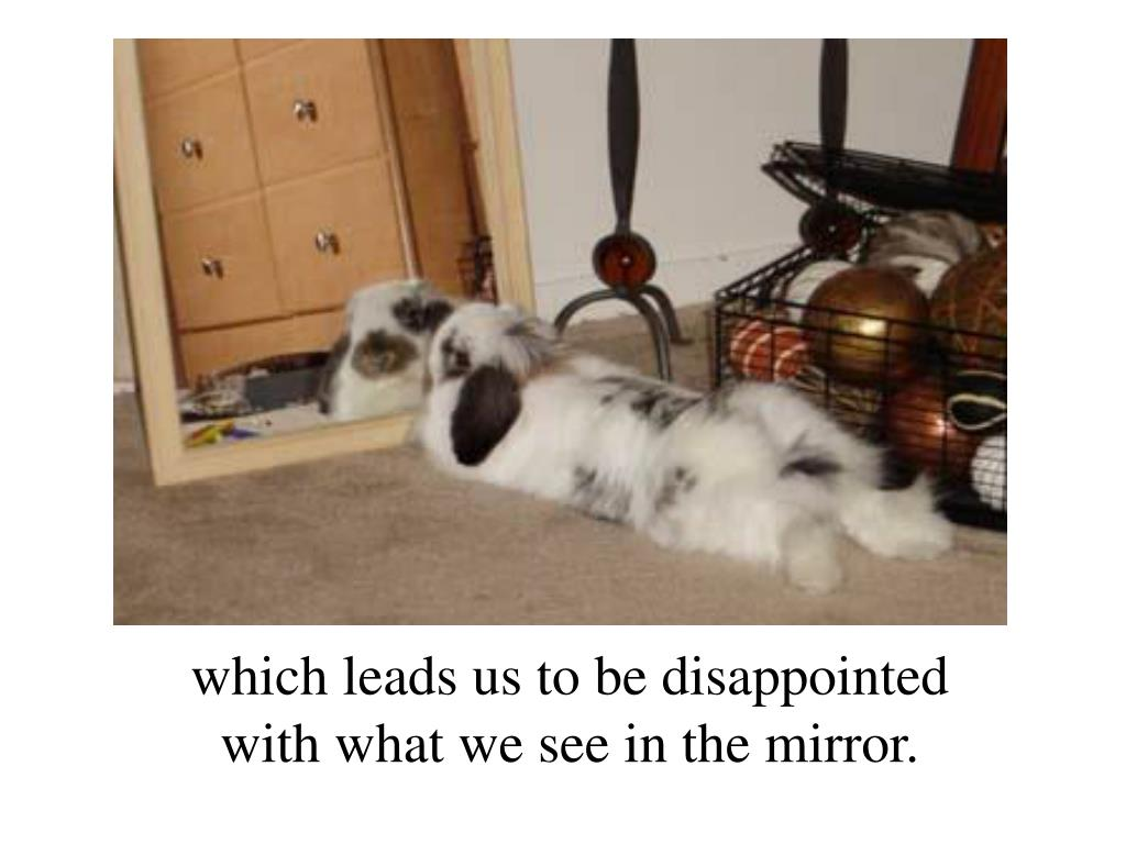 which leads us to be disappointed