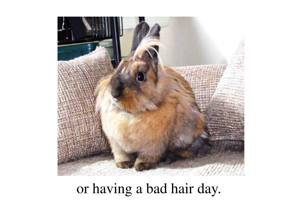 or having a bad hair day.