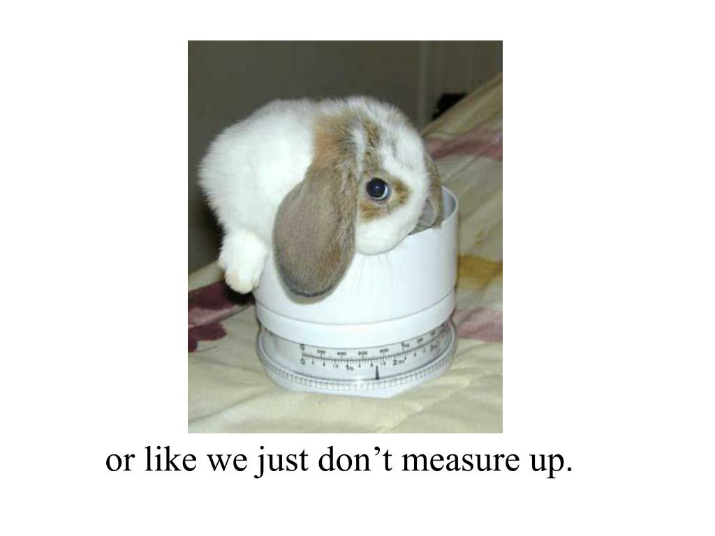 or like we just don't measure up.