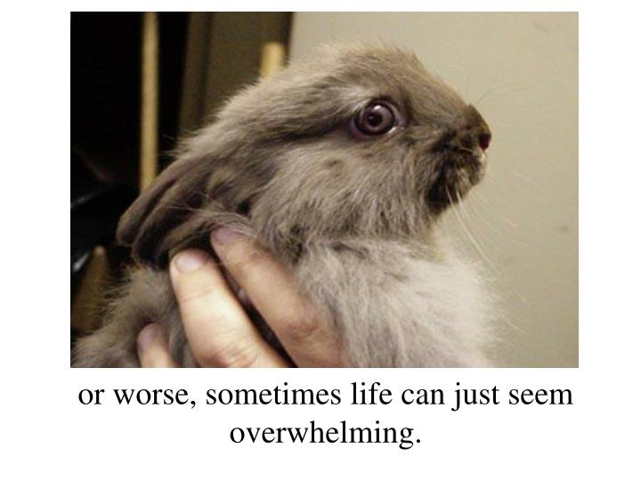 Or worse, sometimes life can just seem