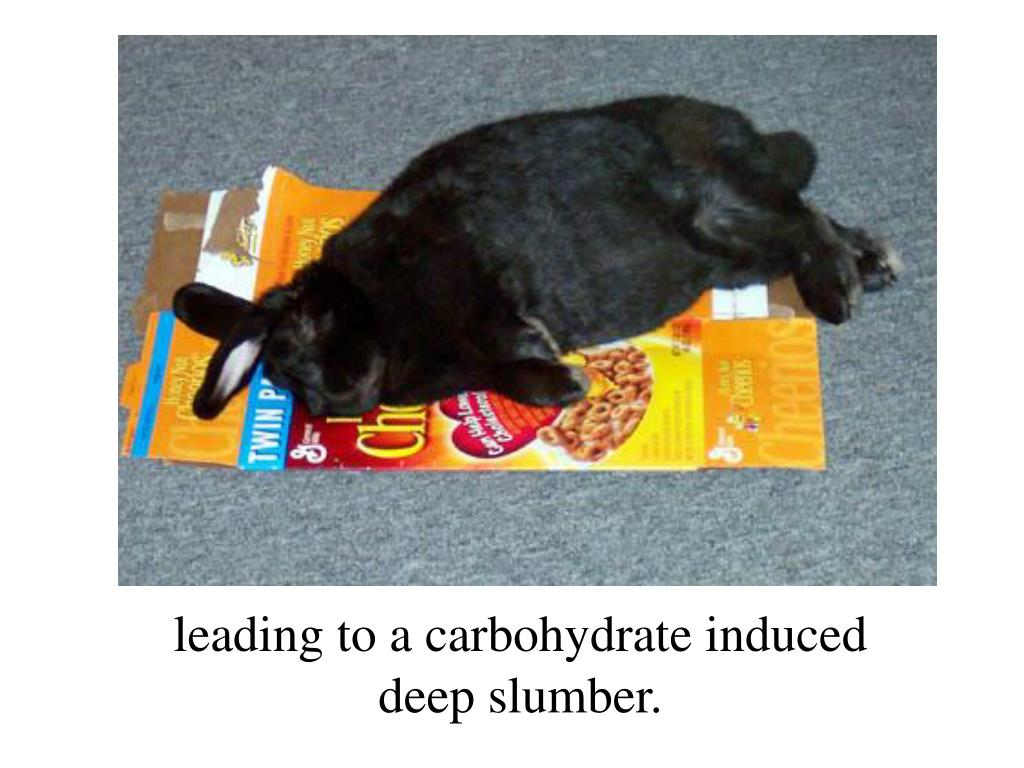 leading to a carbohydrate induced