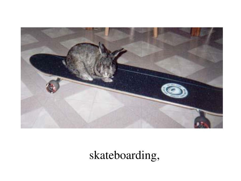 skateboarding,