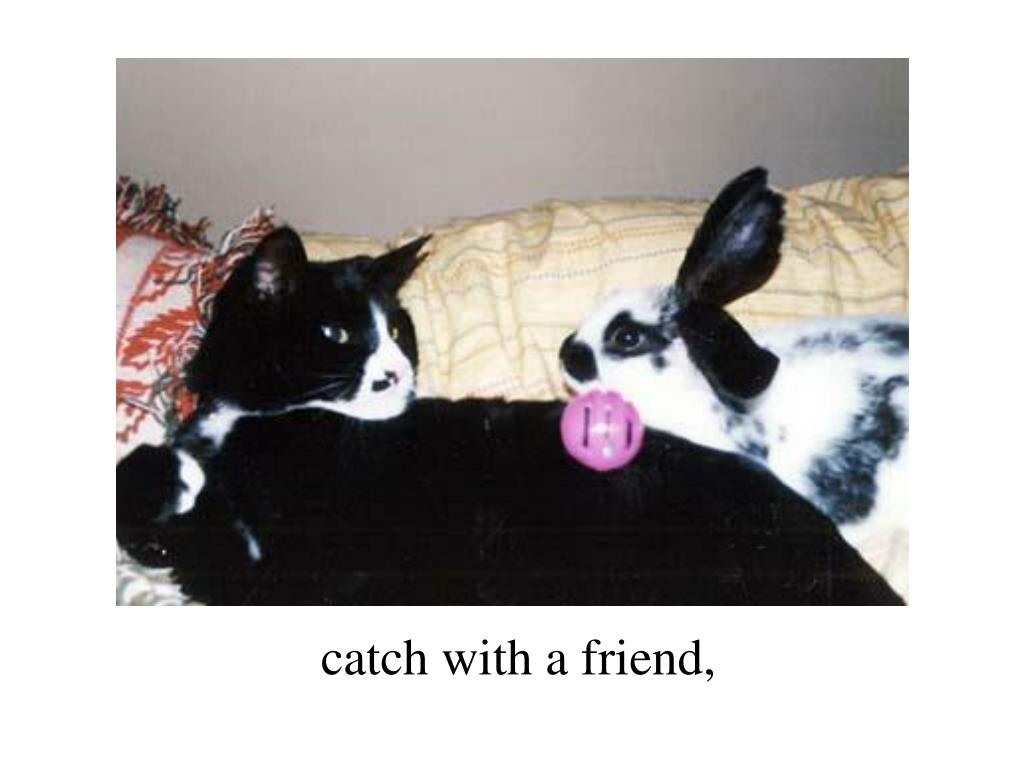 catch with a friend,