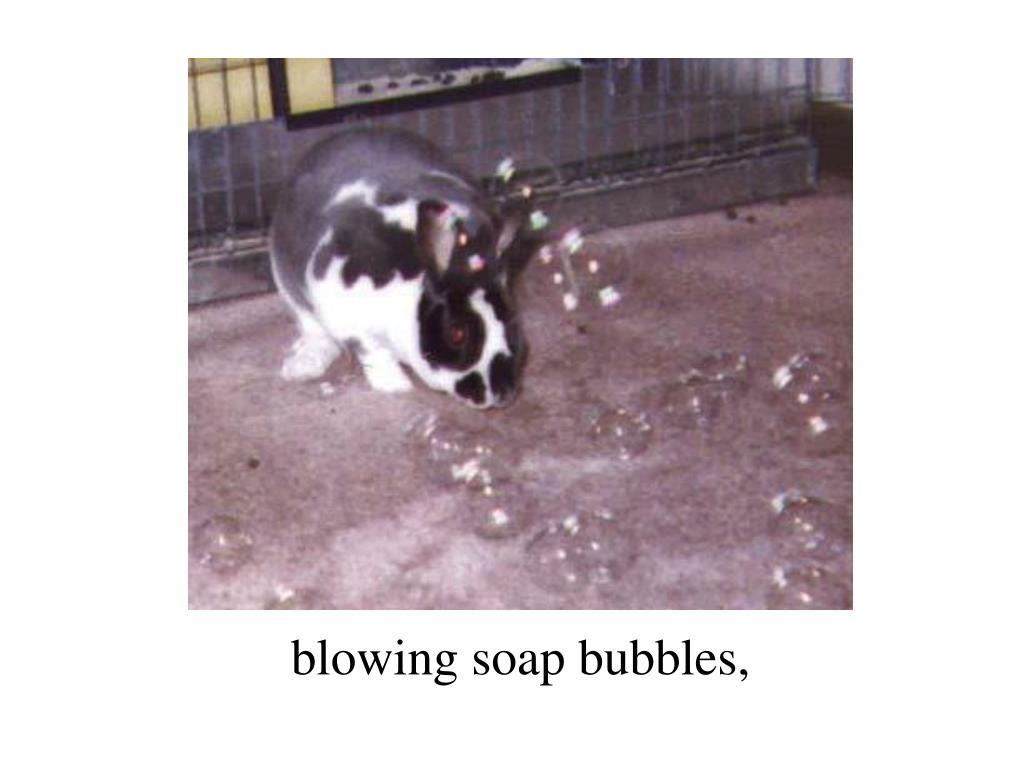 blowing soap bubbles,