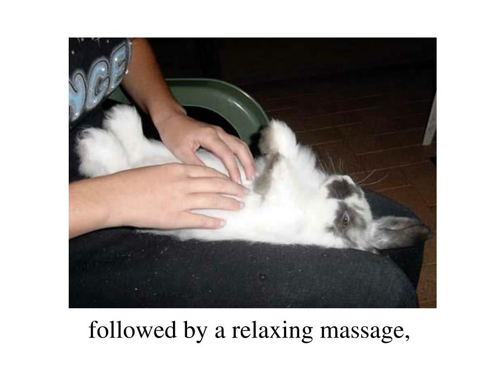 followed by a relaxing massage,