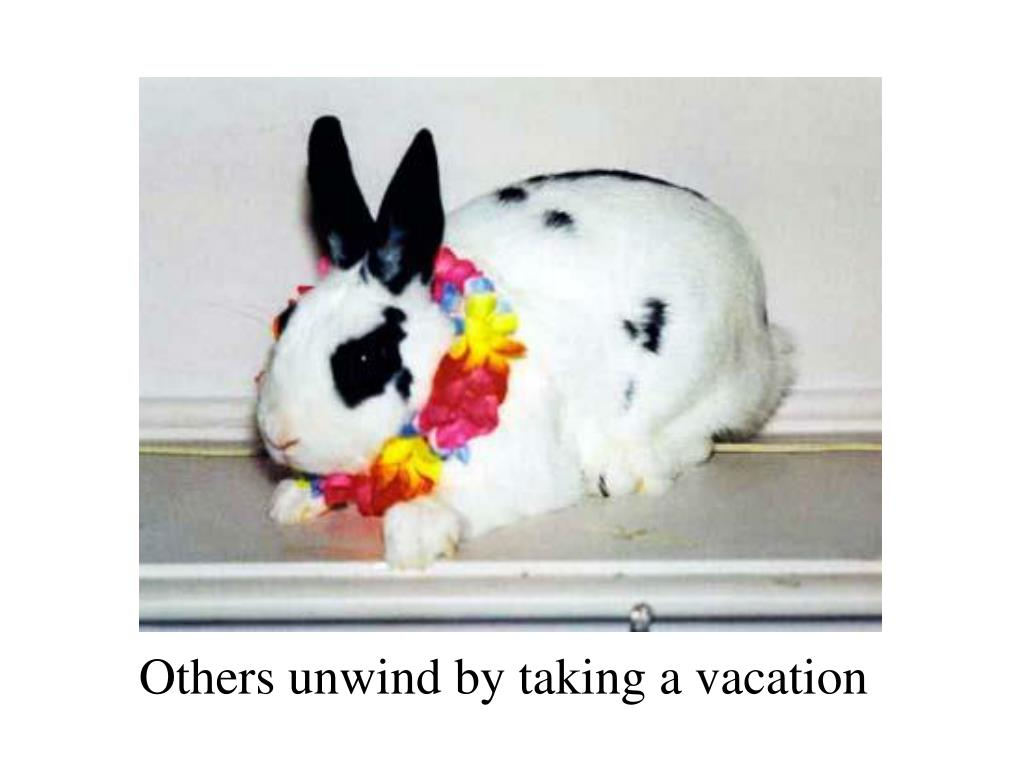 Others unwind by taking a vacation
