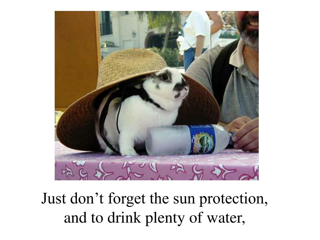 Just don't forget the sun protection,