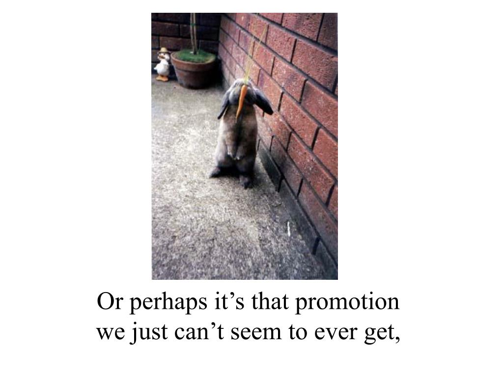 Or perhaps it's that promotion