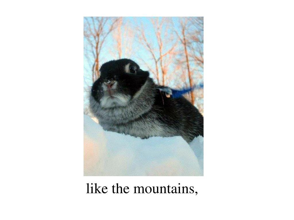 like the mountains,