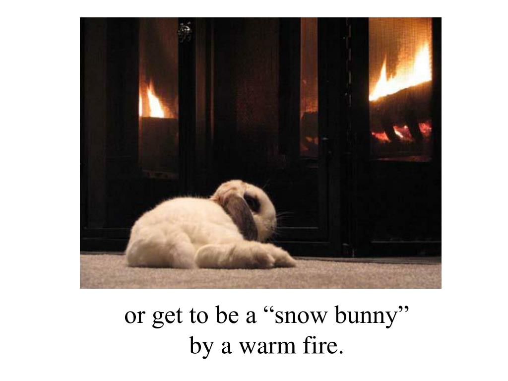 "or get to be a ""snow bunny"""