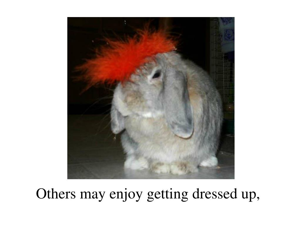 Others may enjoy getting dressed up,