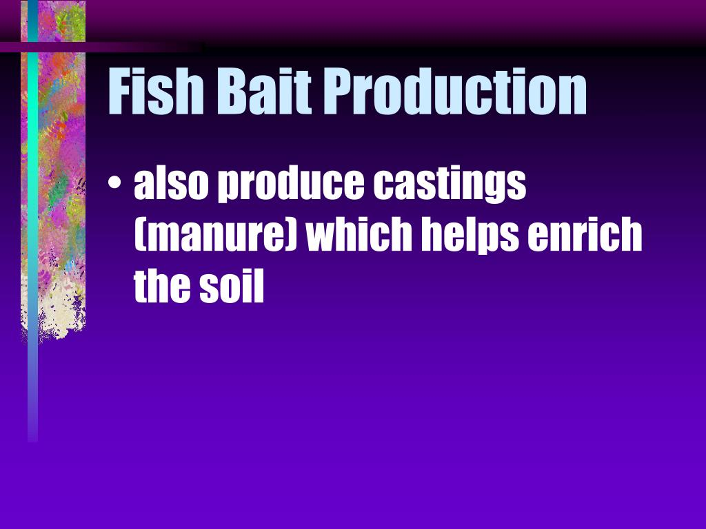 Fish Bait Production