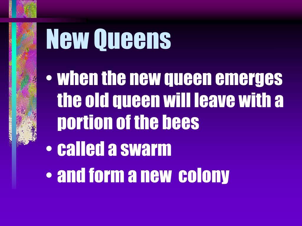 New Queens