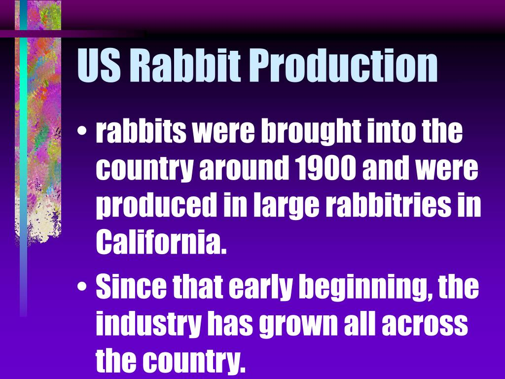 US Rabbit Production