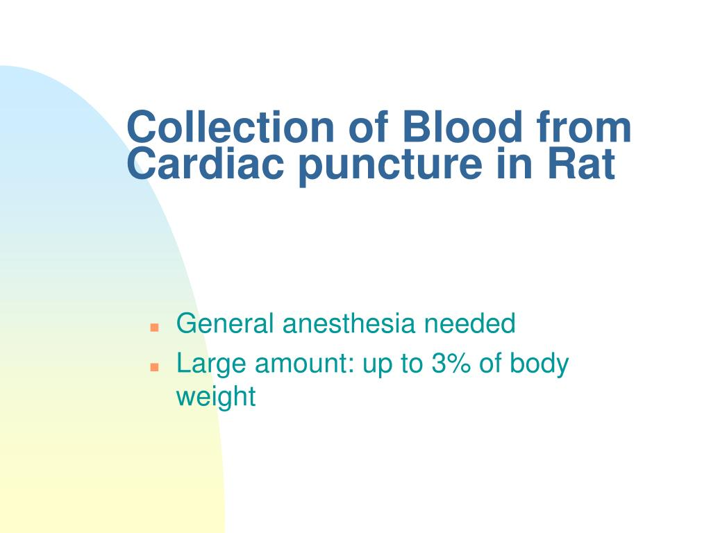 Collection of Blood from Cardiac puncture in Rat