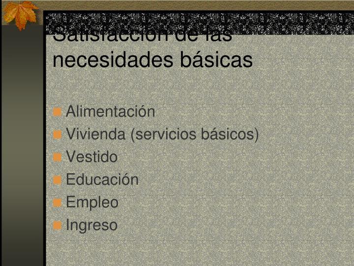 Satisfacción de las necesidades básicas