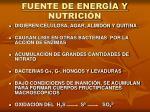 fuente de energ a y nutrici n
