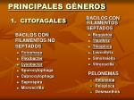 principales g neros 1 citofagales