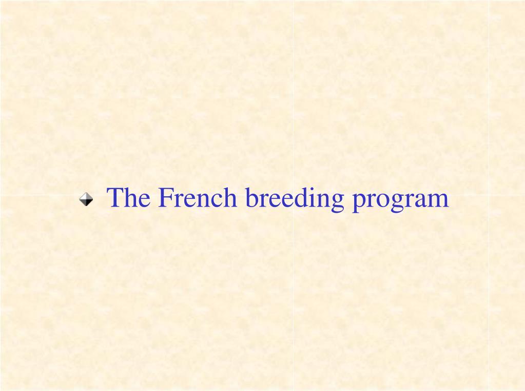 The French breeding program