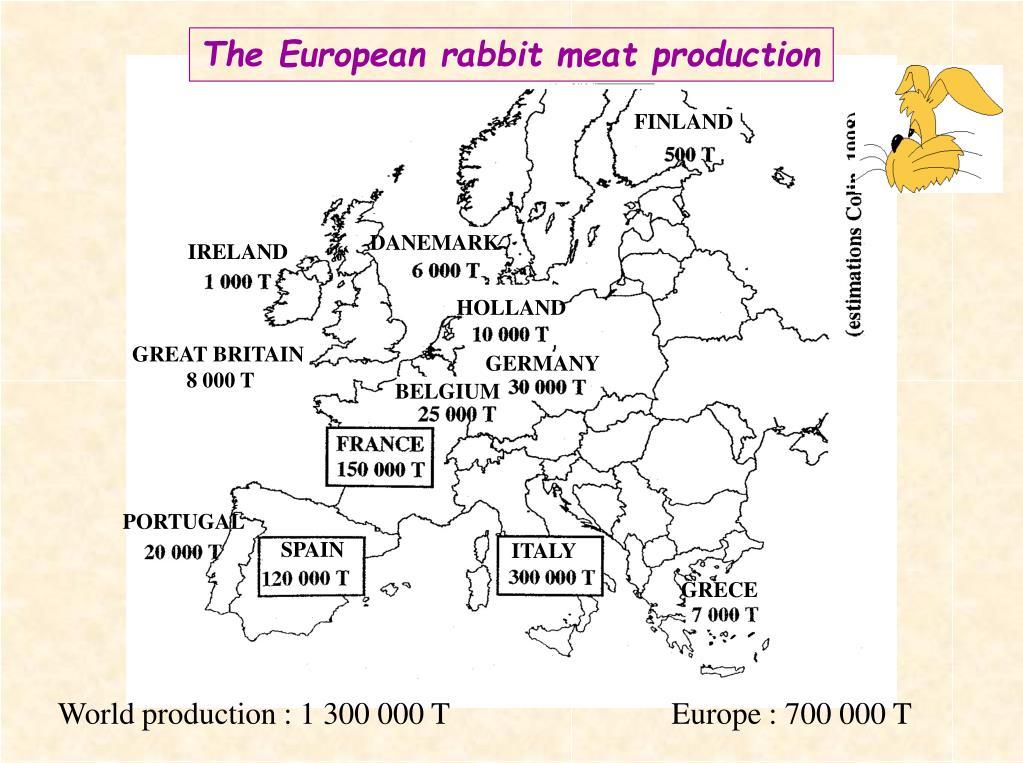 The European r