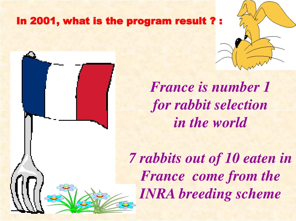 In 2001, what is the program result ? :
